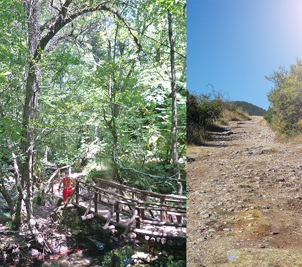 Eco Hiking and Cycling Paths in Strandja Mountain