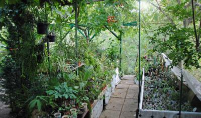 Botanic garden Serafimovi